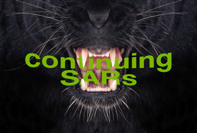 Having Trouble Taming the Continuing SAR Beast?